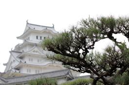 ドローン空撮 活用例|歴史的重要文化財建築物